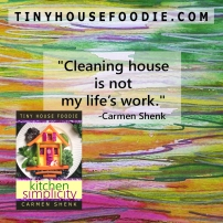 cleaning house is not my life's work